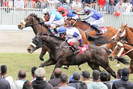 Betting tips horse racing mauritius free 10 dollars sports betting